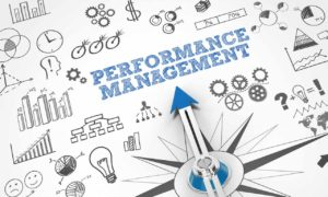Key Elements of a Performance Management Process For Start-ups